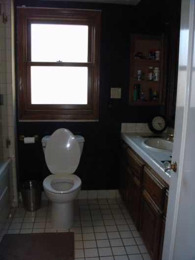 The bathroom on HGTV's Power Broker before they stenciled.