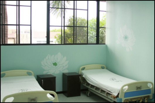The Tree Peony Stencil dresses up this maternity hospital room in San Salvidor. http://www.cuttingedgestencils.com/large-flower-stencil-design.html