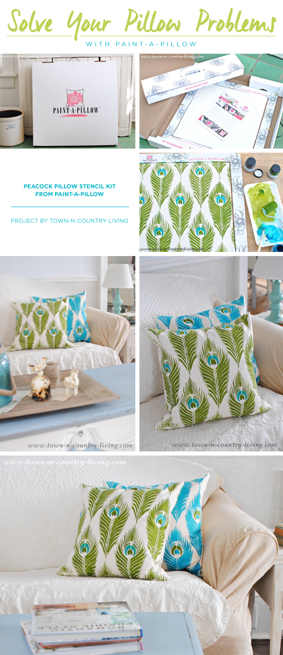 Cutting Edge Stencils shares how to DIY stenciled accent pillows using the Peacock Feathers Paint-A-Pillow kit. http://paintapillow.com/index.php/peacock-feathers-paint-a-pillow-kit.html