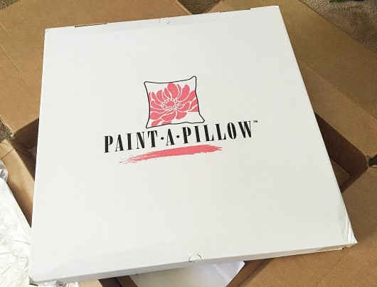 Paisley Paint-A-Pillow kit. http://paintapillow.com/index.php/paisleys-paint-a-pillow-kit.html