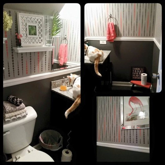 A DIY stenciled bathroom using the Beads Allover Stencil in pink and gray. http://www.cuttingedgestencils.com/beads-wall-stencil-pattern.html